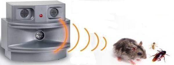 защита от мышей в гараже